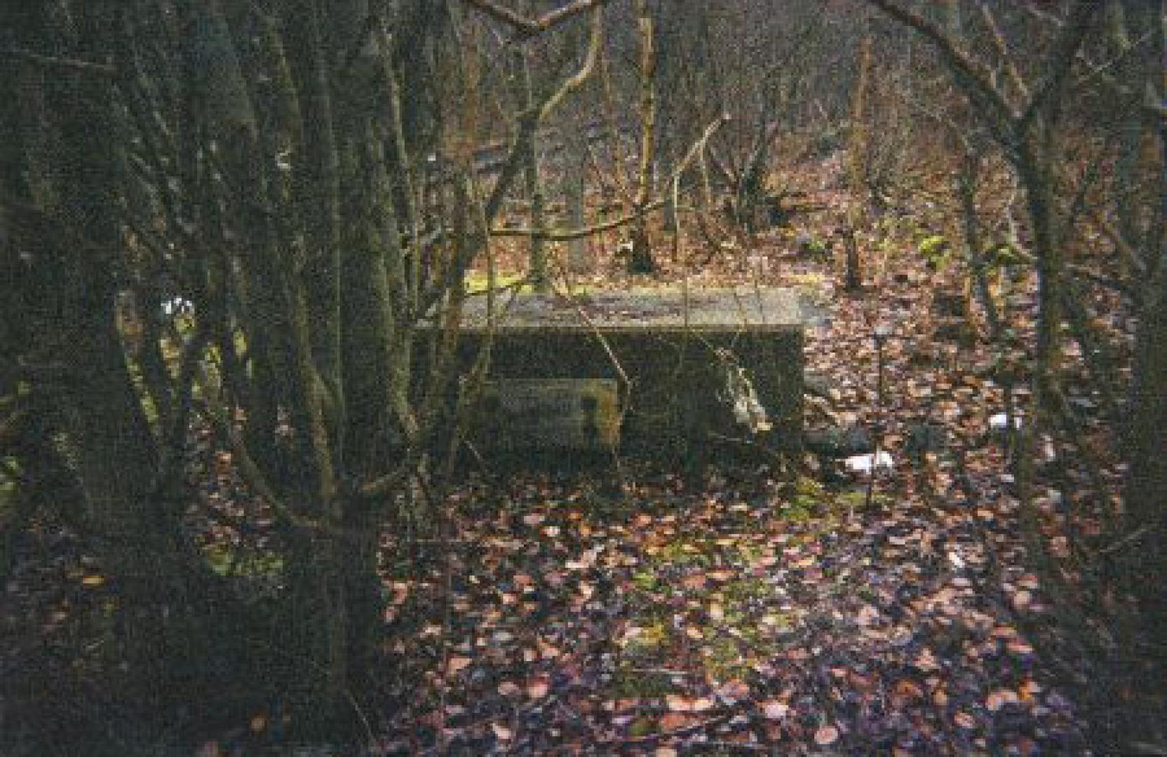 Dudleytown, a kárhozottak faluja 3. kép
