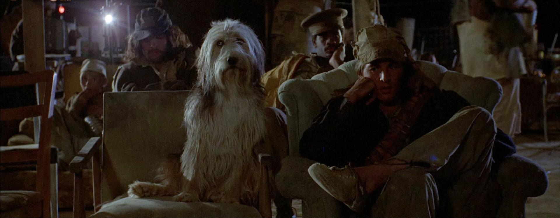 A fiú és a kutyája 2. kép