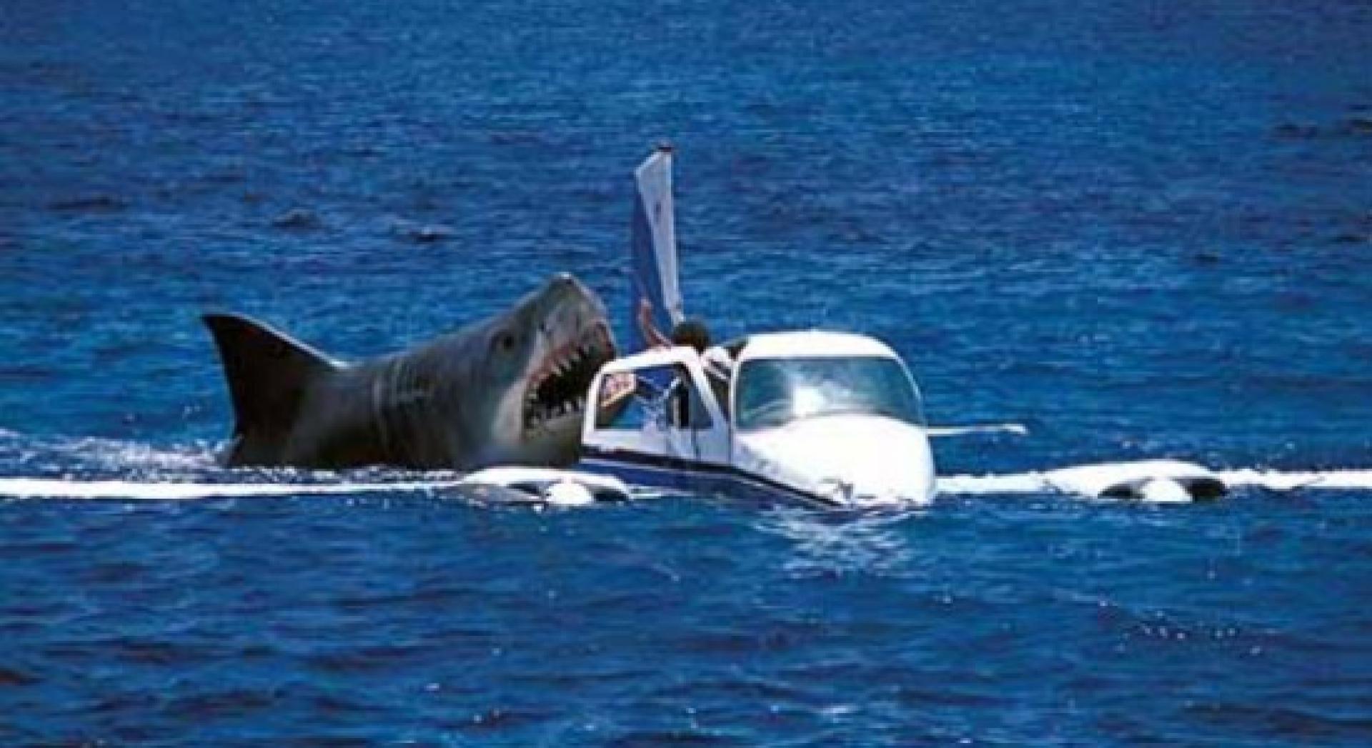 Jaws: The Revenge - A cápa bosszúja (1987) 2. kép