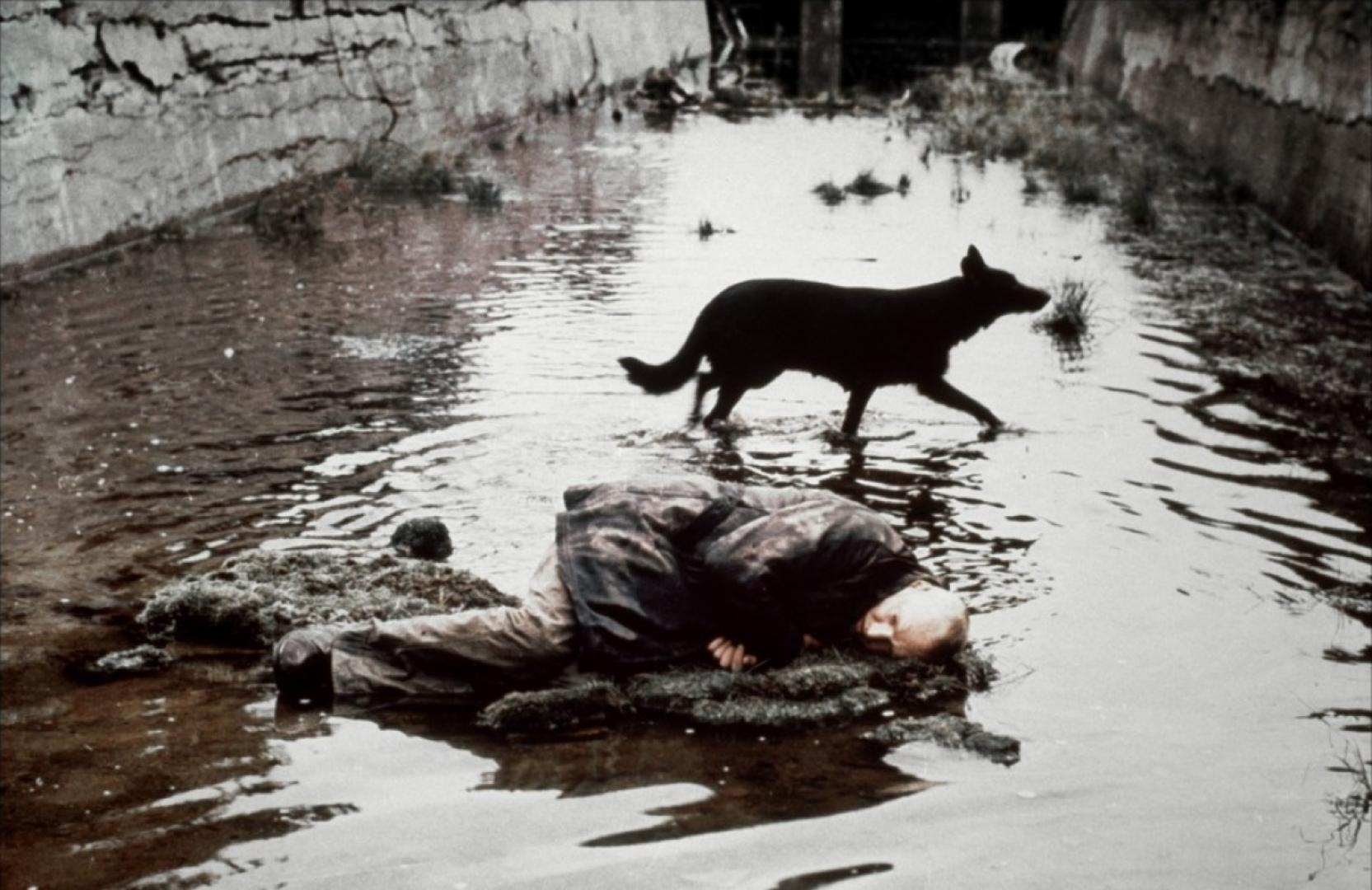 Stalker (1979) 2. kép