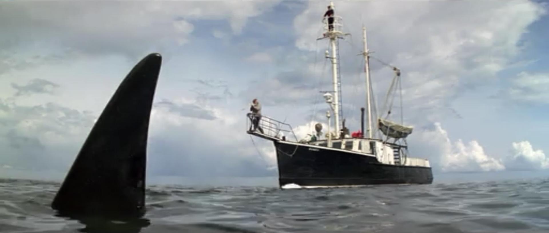 Orca - A gyilkos bálna (1977) 1. kép