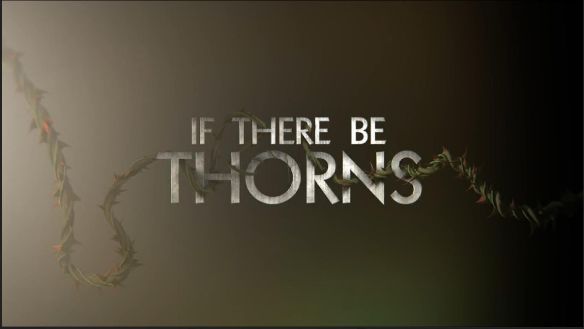 V. C Andrews: If There Be Thorns - Ha szúr a tövis