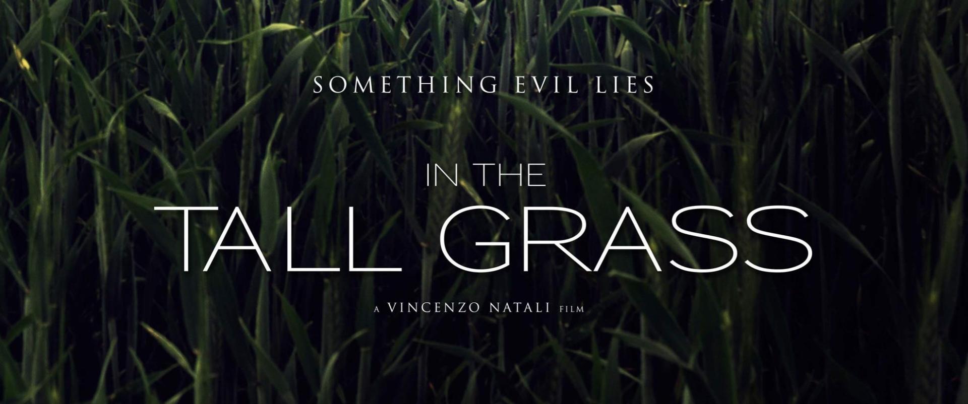 In the Tall Grass - A magas fűben (2019)