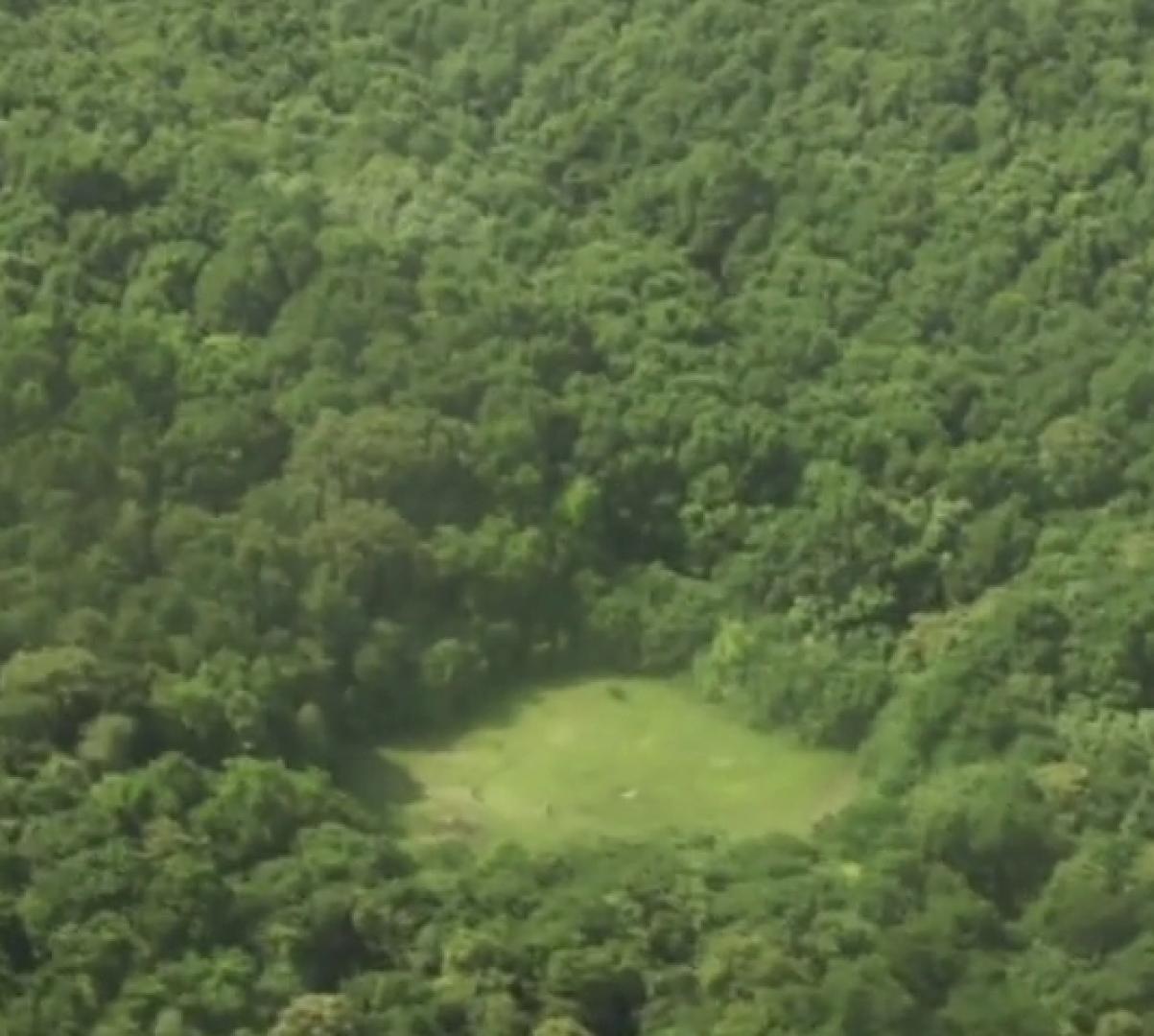 Hója-erdő 7. kép