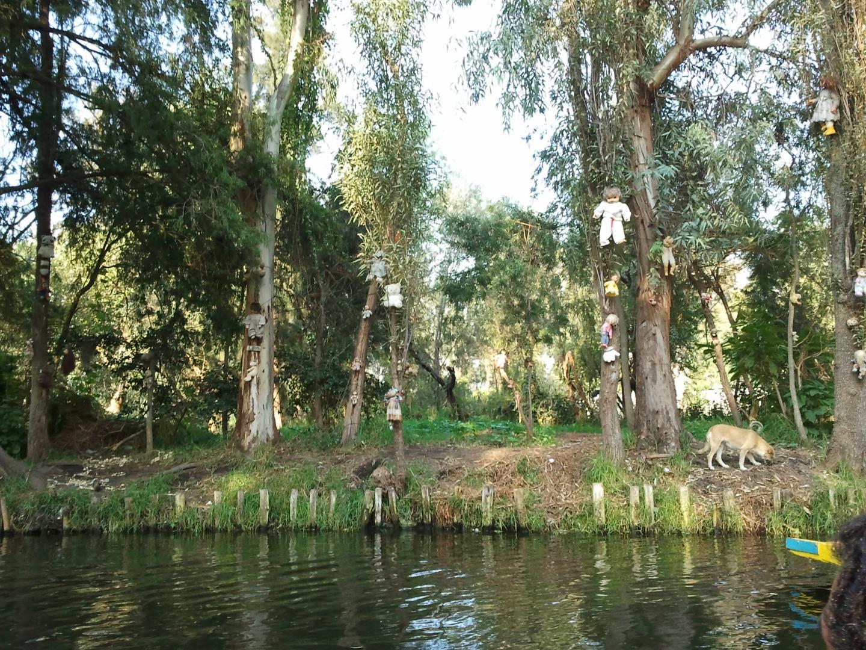 A Babák szigete (Isla de las Munecas) 2. kép