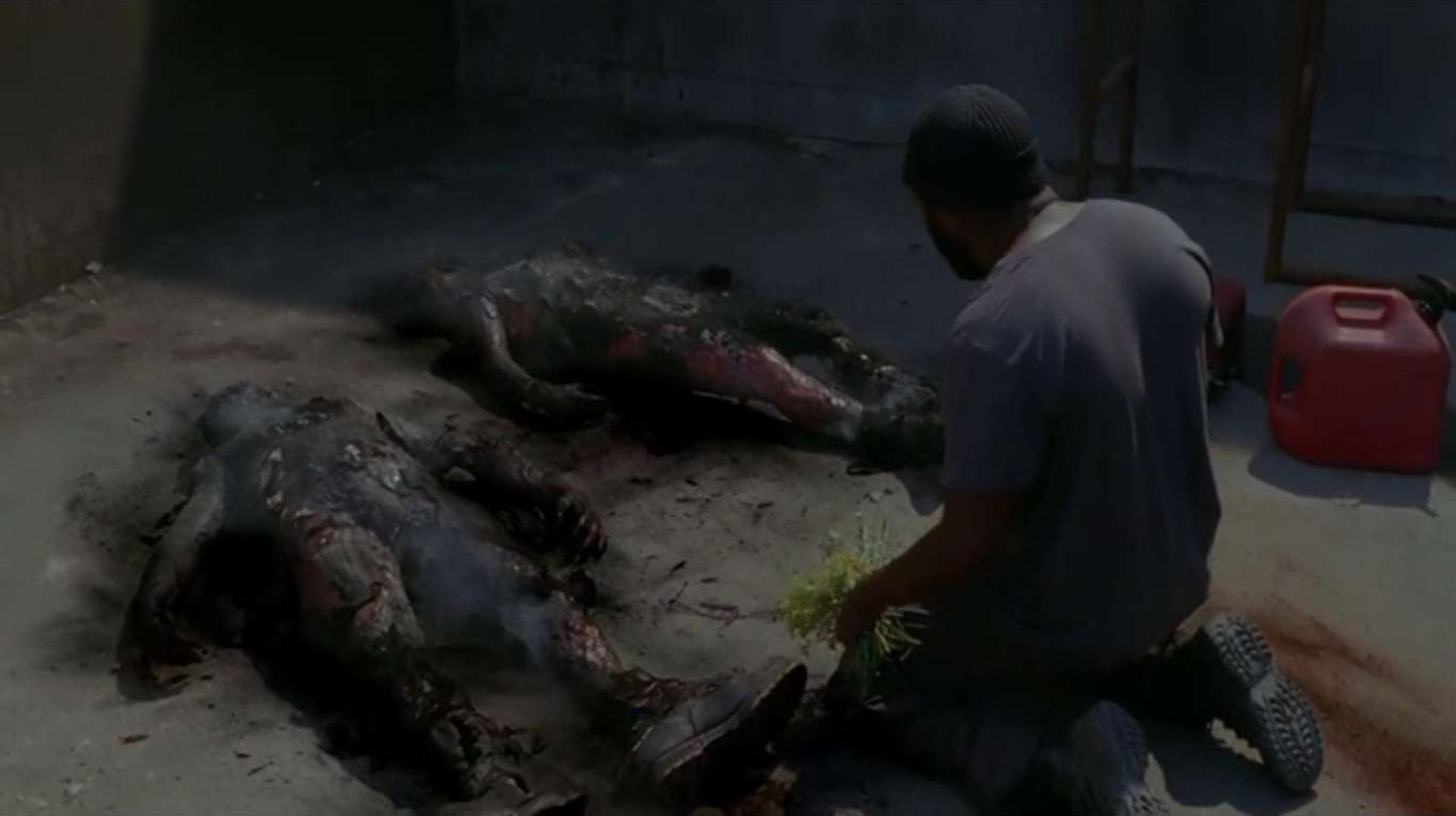 The Walking Dead 3. kötet 17. kép