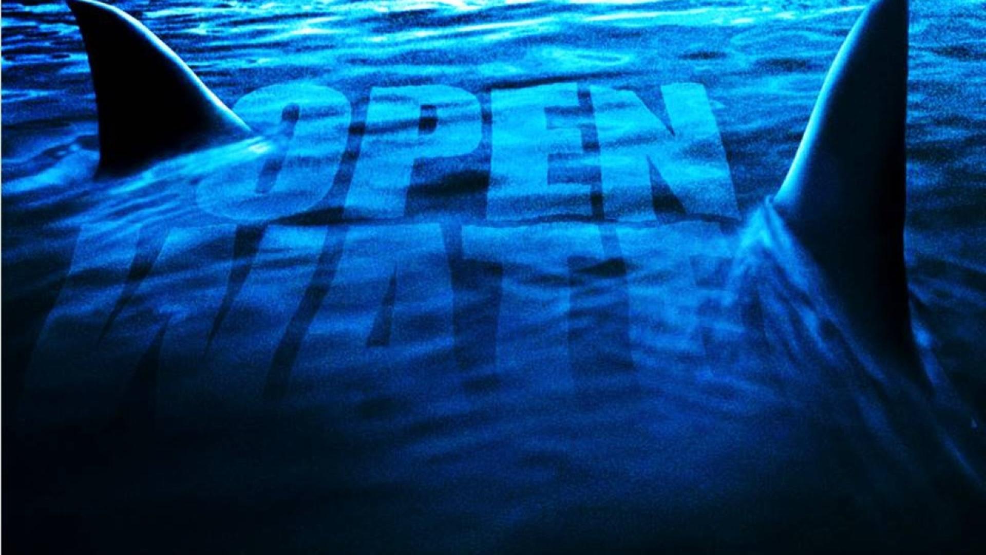 Open Water 3: Cage Dive / Nyílt tengeren - Cápák között (2017)