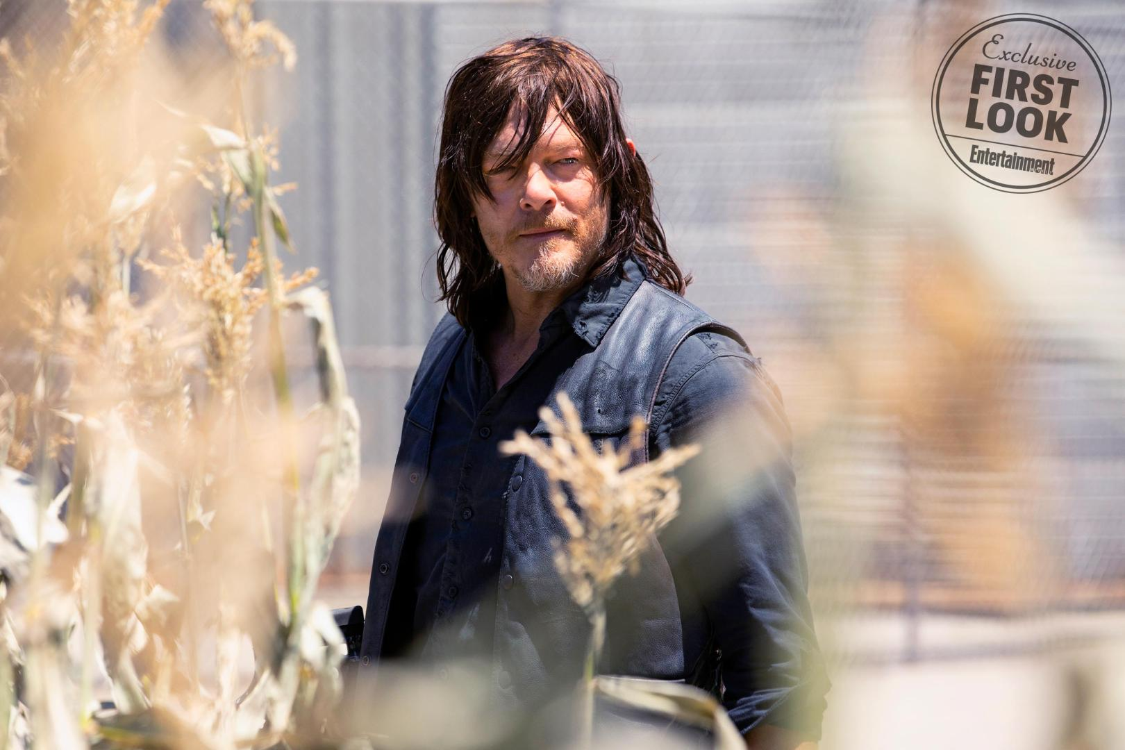 ew_first_look_the_twd