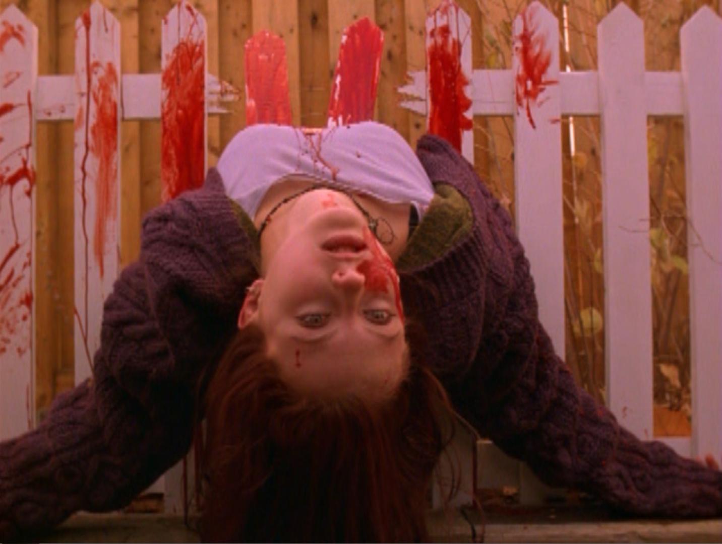 Ginger a kerítésen