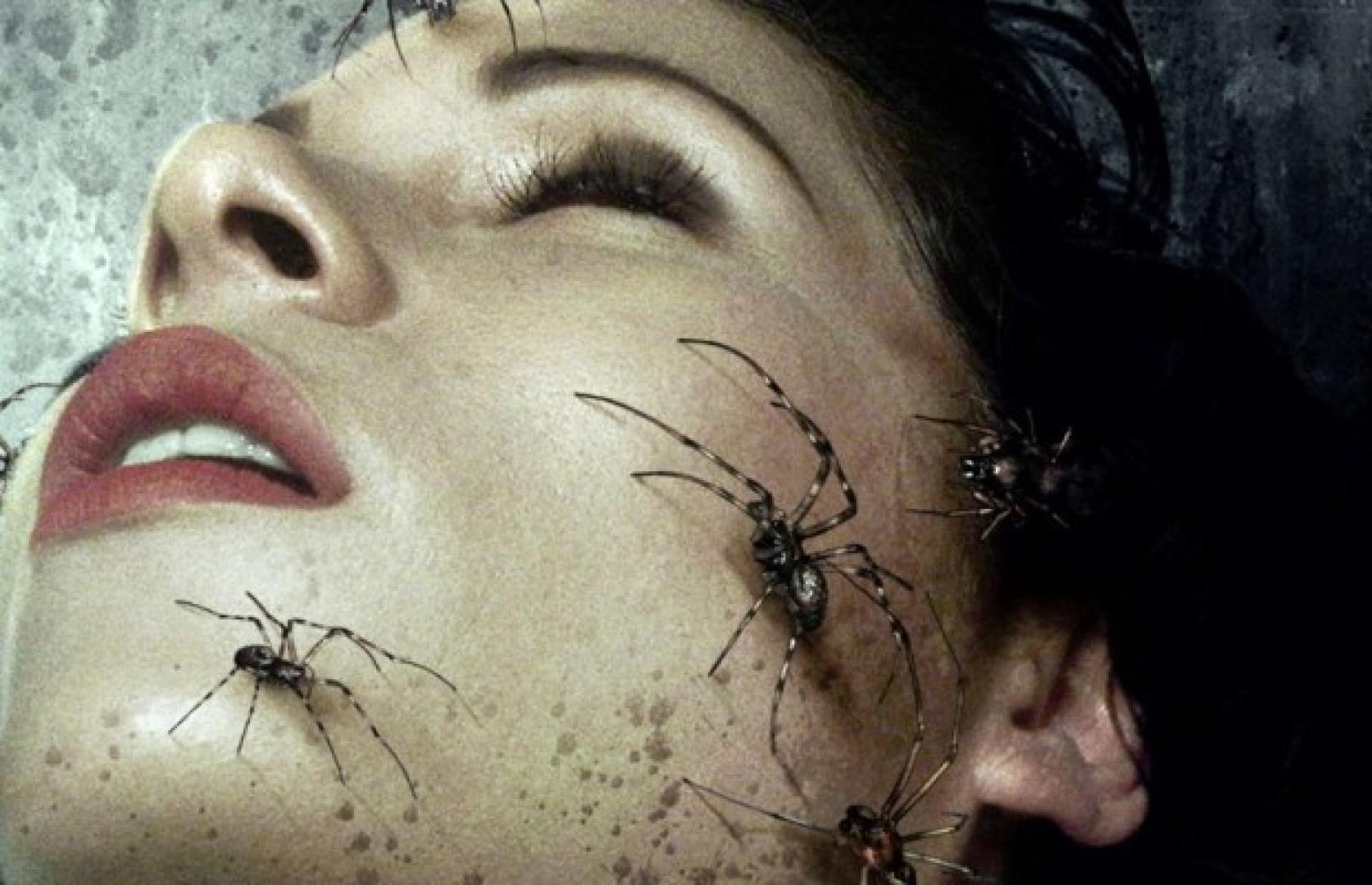 Bedlam - Itt a kezelés rémálommal ér fel