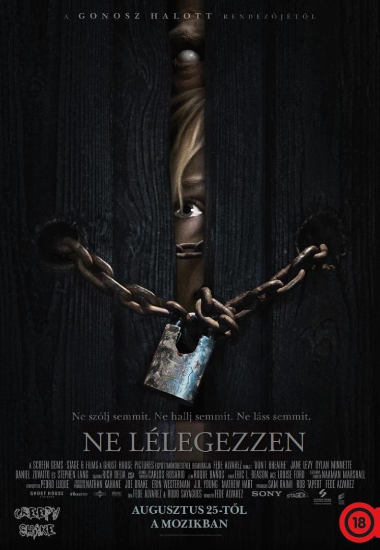 google_plakat_2_kep