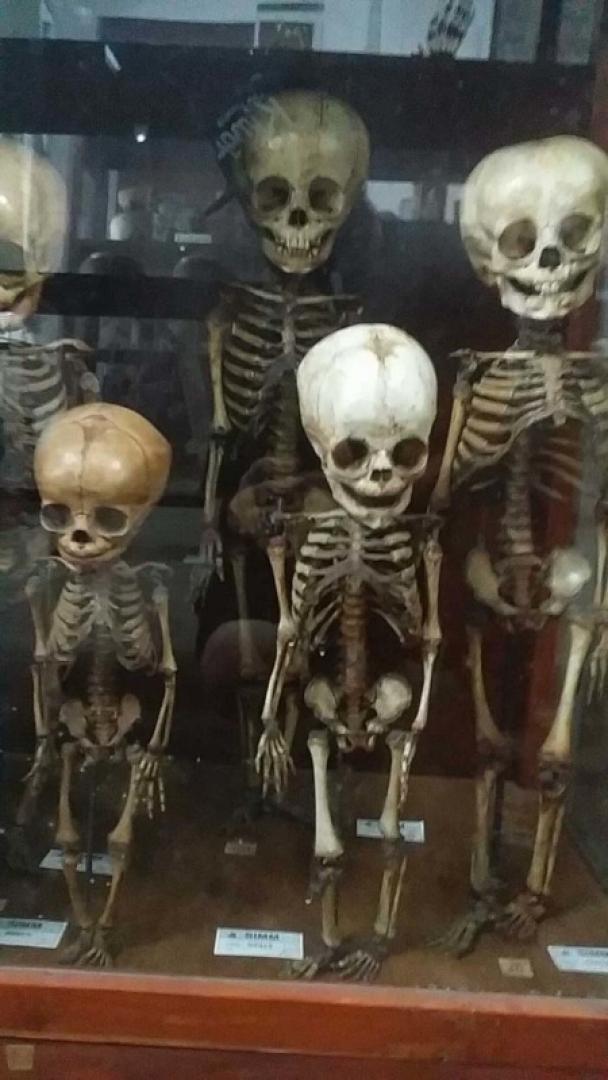 A Halál Múzeuma 5. kép