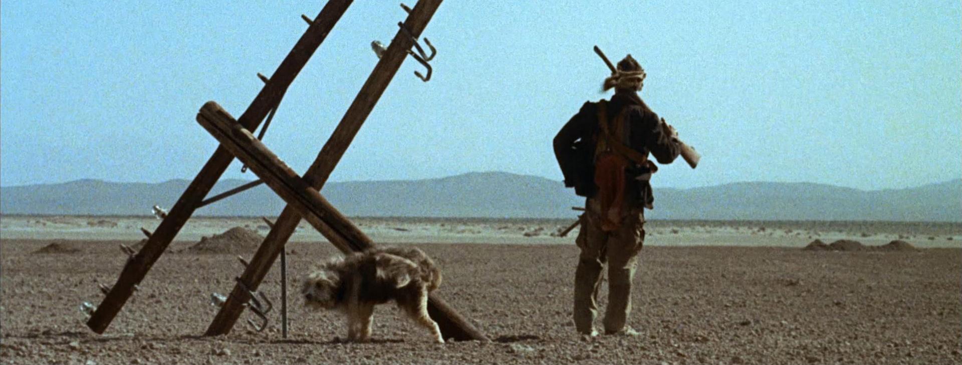 A fiú és a kutyája 3. kép
