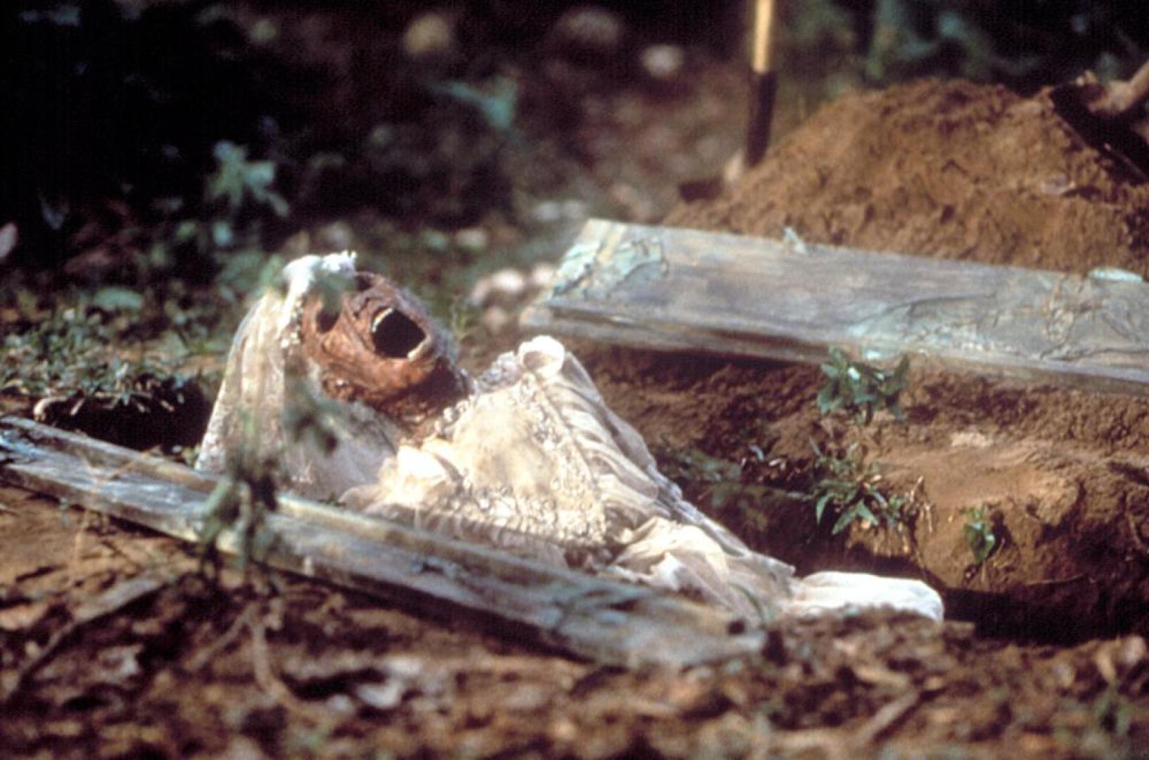 The Serpent and the Rainbow - A kígyó és a szivárvány (1988) 1.kép