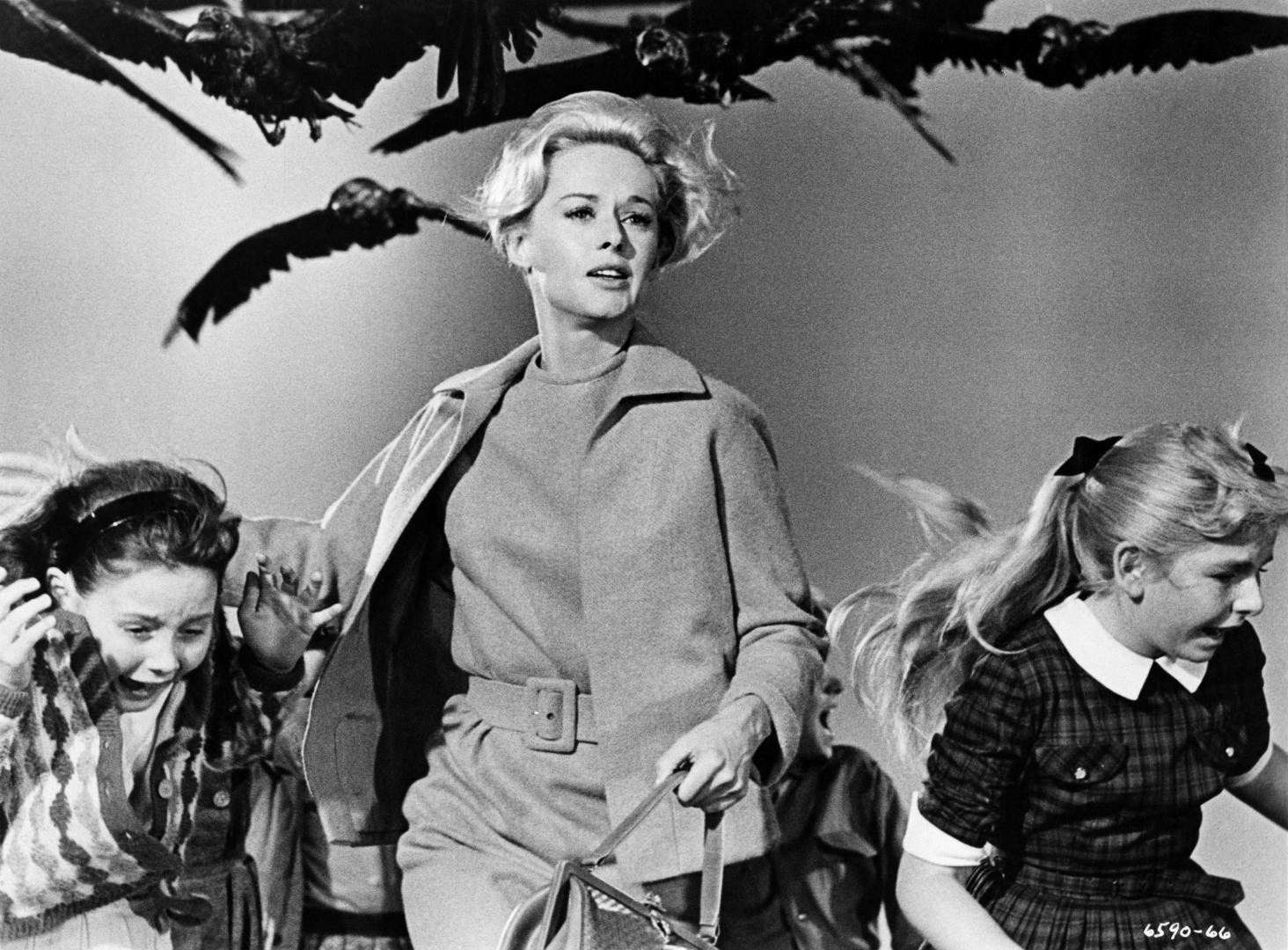 The Birds - Madarak (1963)