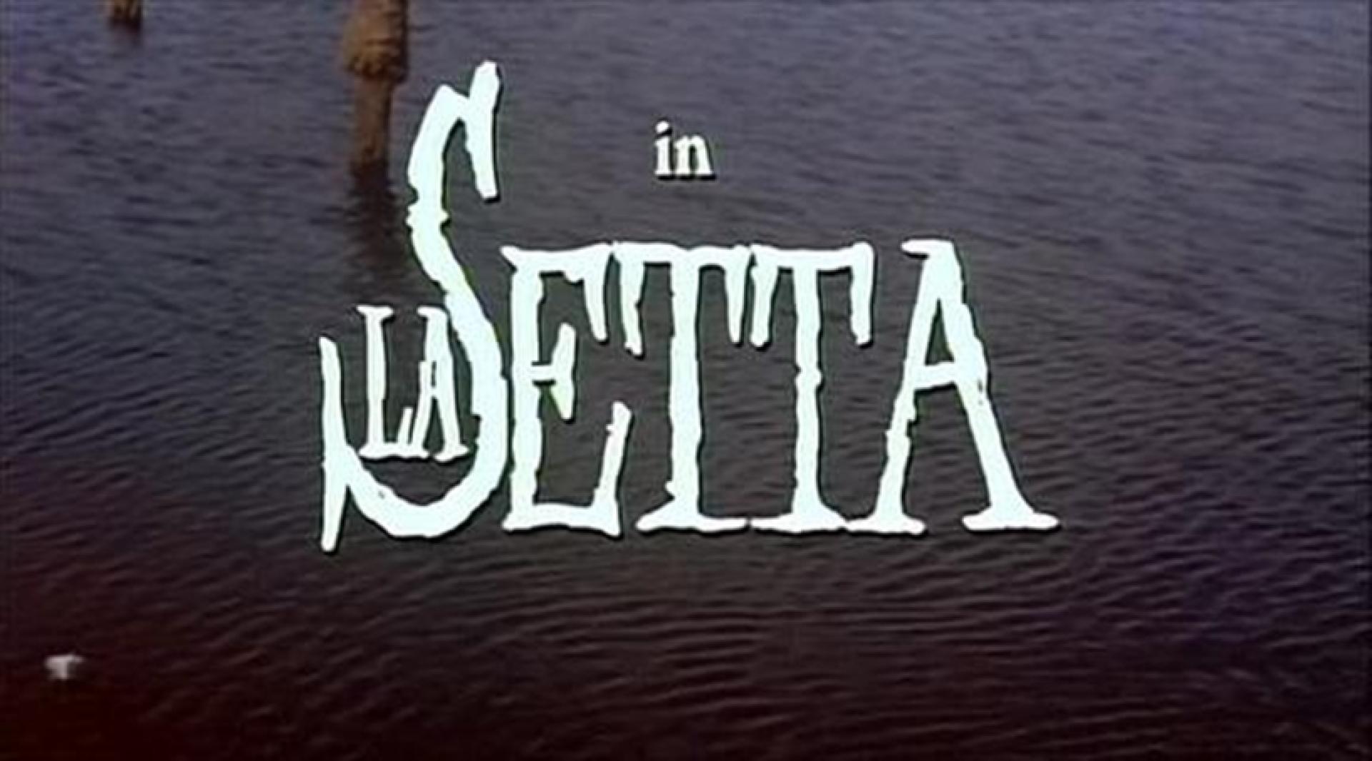 La setta / The Sect (1991)