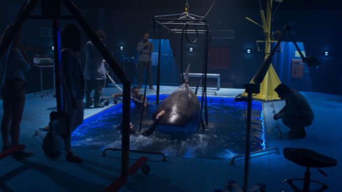 Deep Blue Sea 2 - Háborgó mélység 2 (2018) - Természet