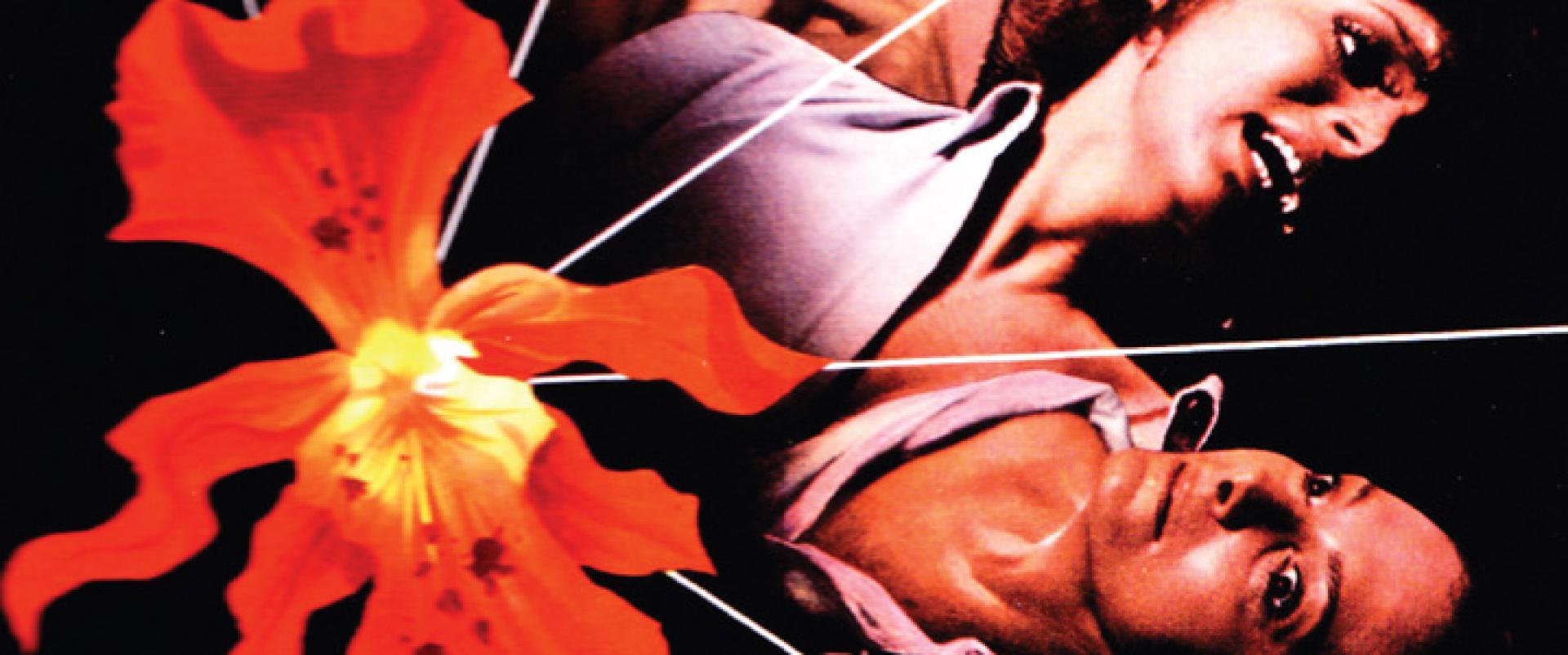 Sette orchidee macchiate di rosso - Hét vérfoltos orchidea (1972)