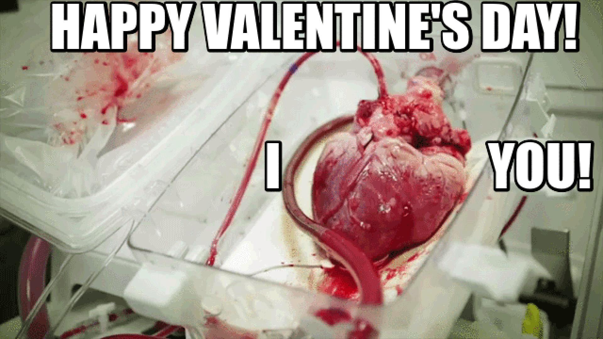 Valentin-nap '16 13. kép
