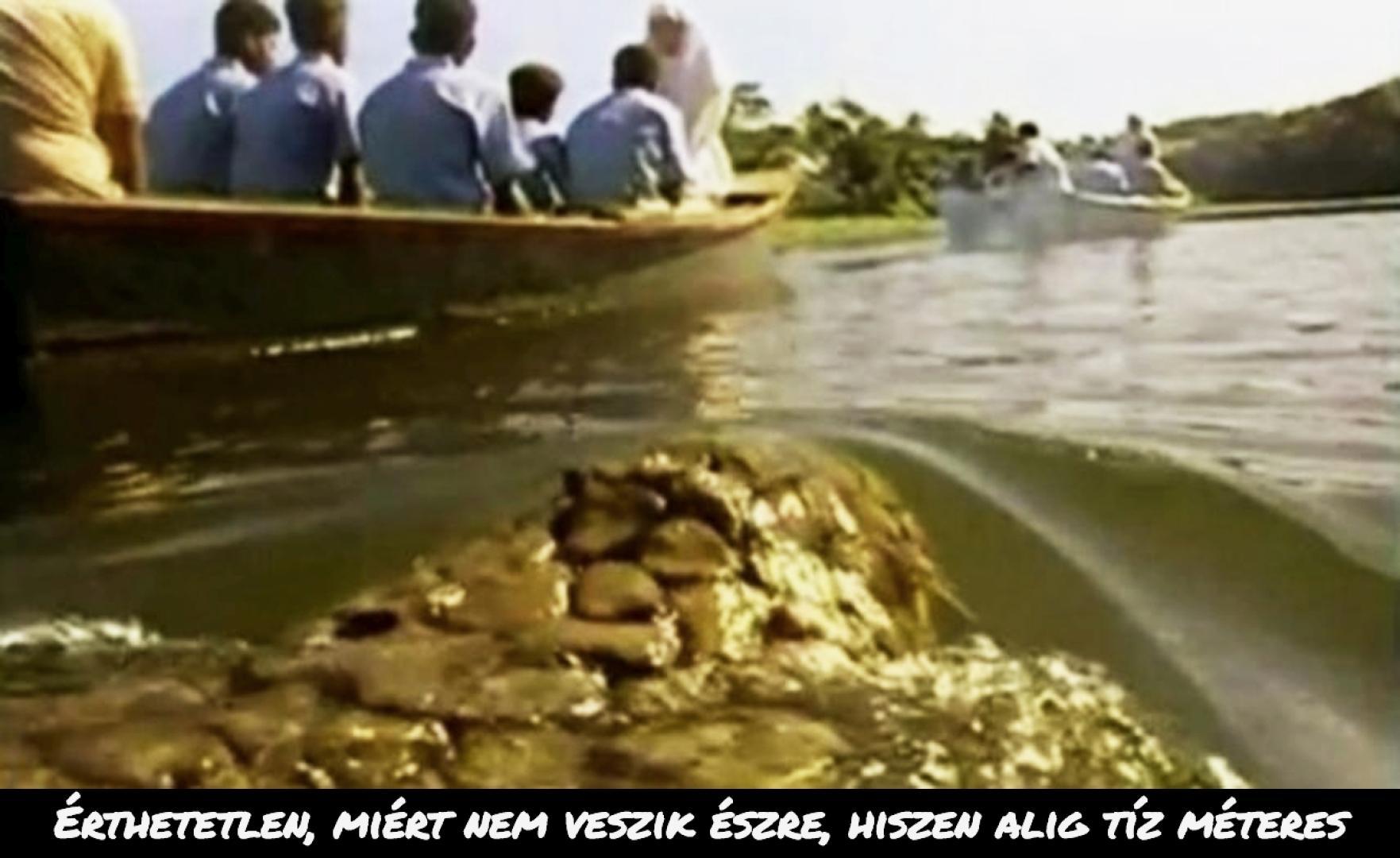 Killer Crocodile 2 (1990) 1.kép
