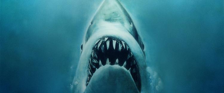 Jaws 1-4 - Cápa 1-4 (1975/1978/1983/1987) - Természet