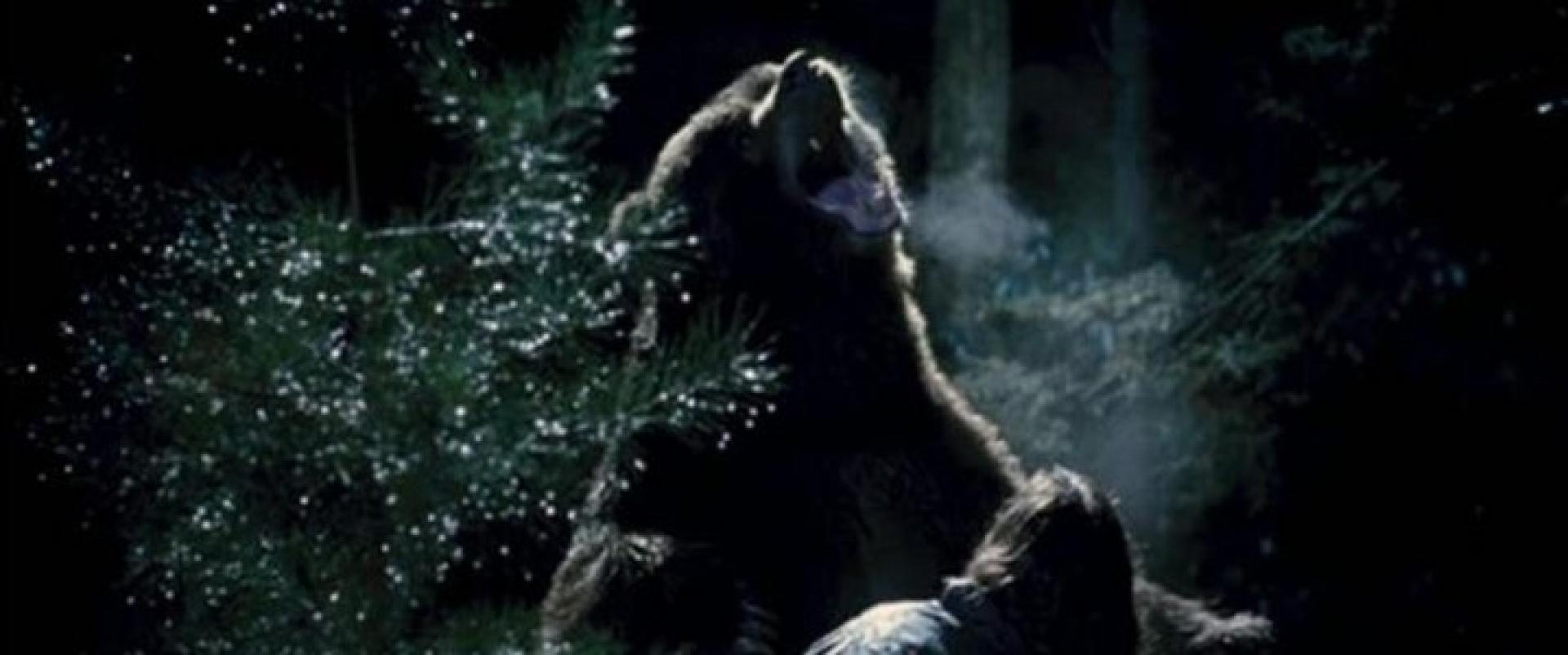 Grizzly Park - Nyolc préda (2008)