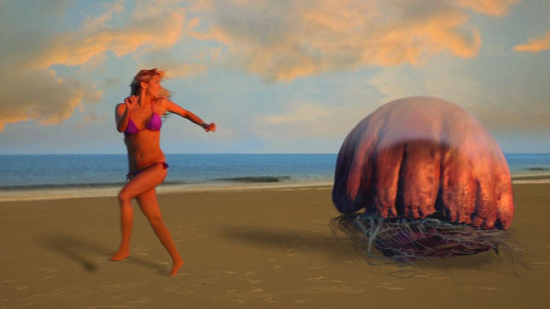 Film készül a 13 perces Hellyfishből