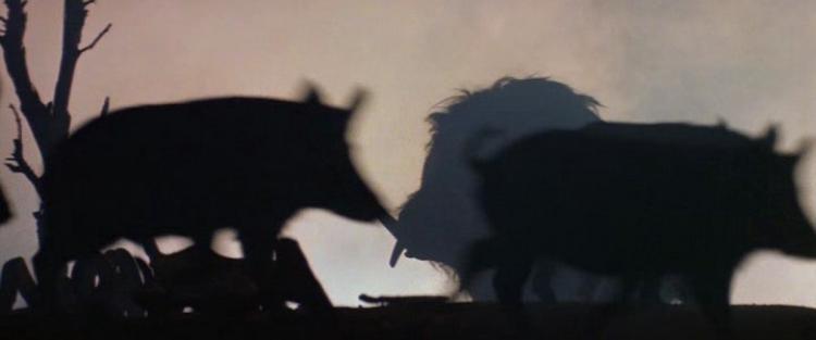 Ausztrál extrém III. - Pokolszülött (1984) - Ausztrál Extrém