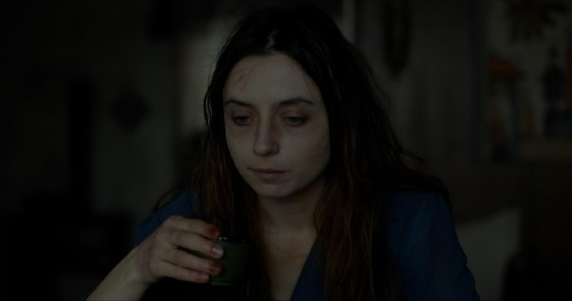 Shelley (2016) 2.kép