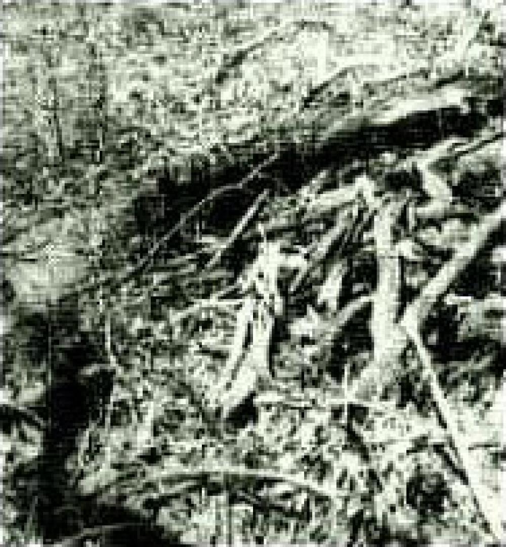 Ivan Milat 4. kép