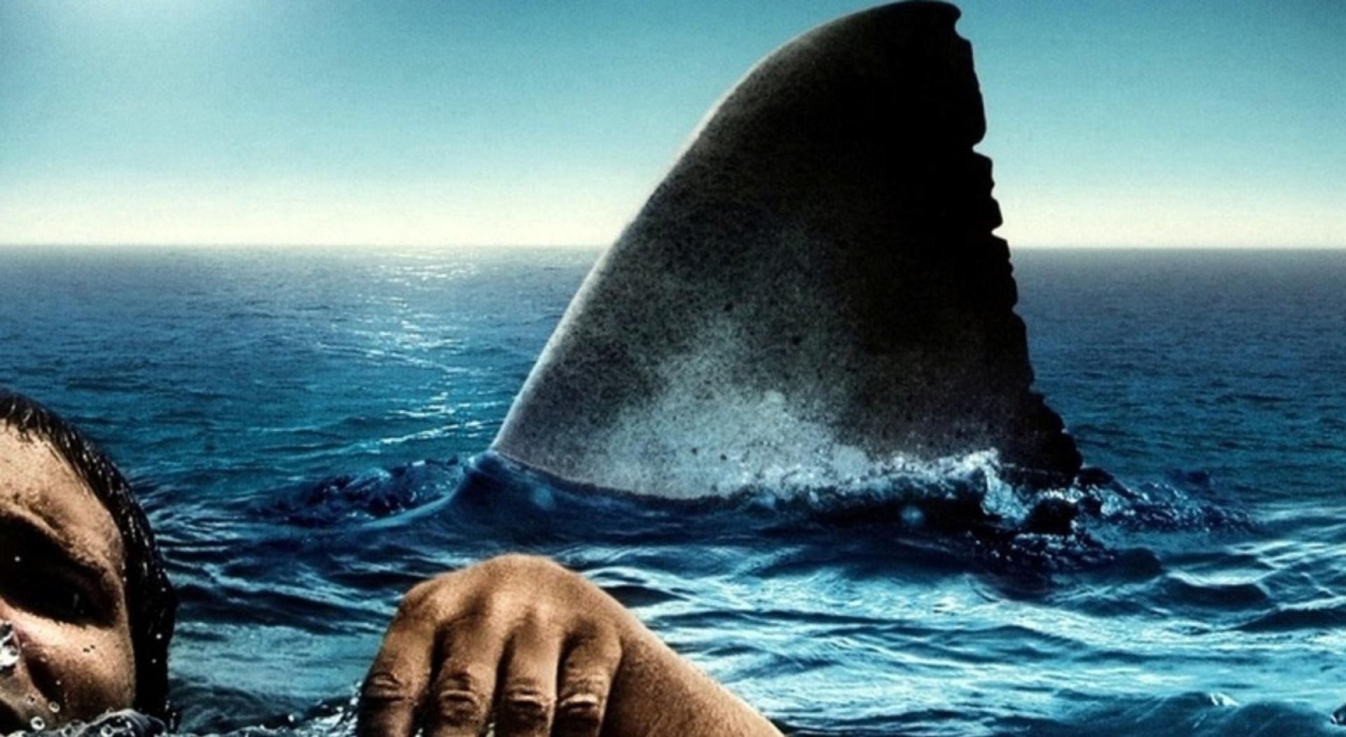 The Reef – A zátony (2010)