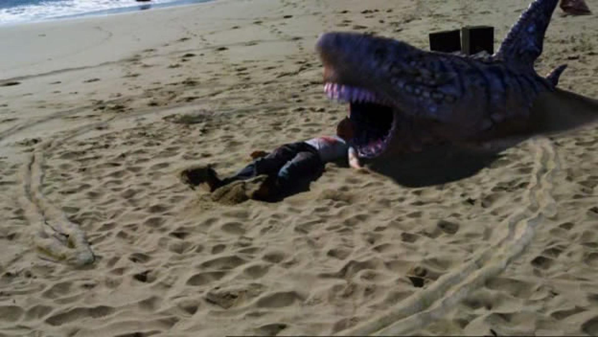 12. mondom, víz se kell, hogy felfaljon egy cápa