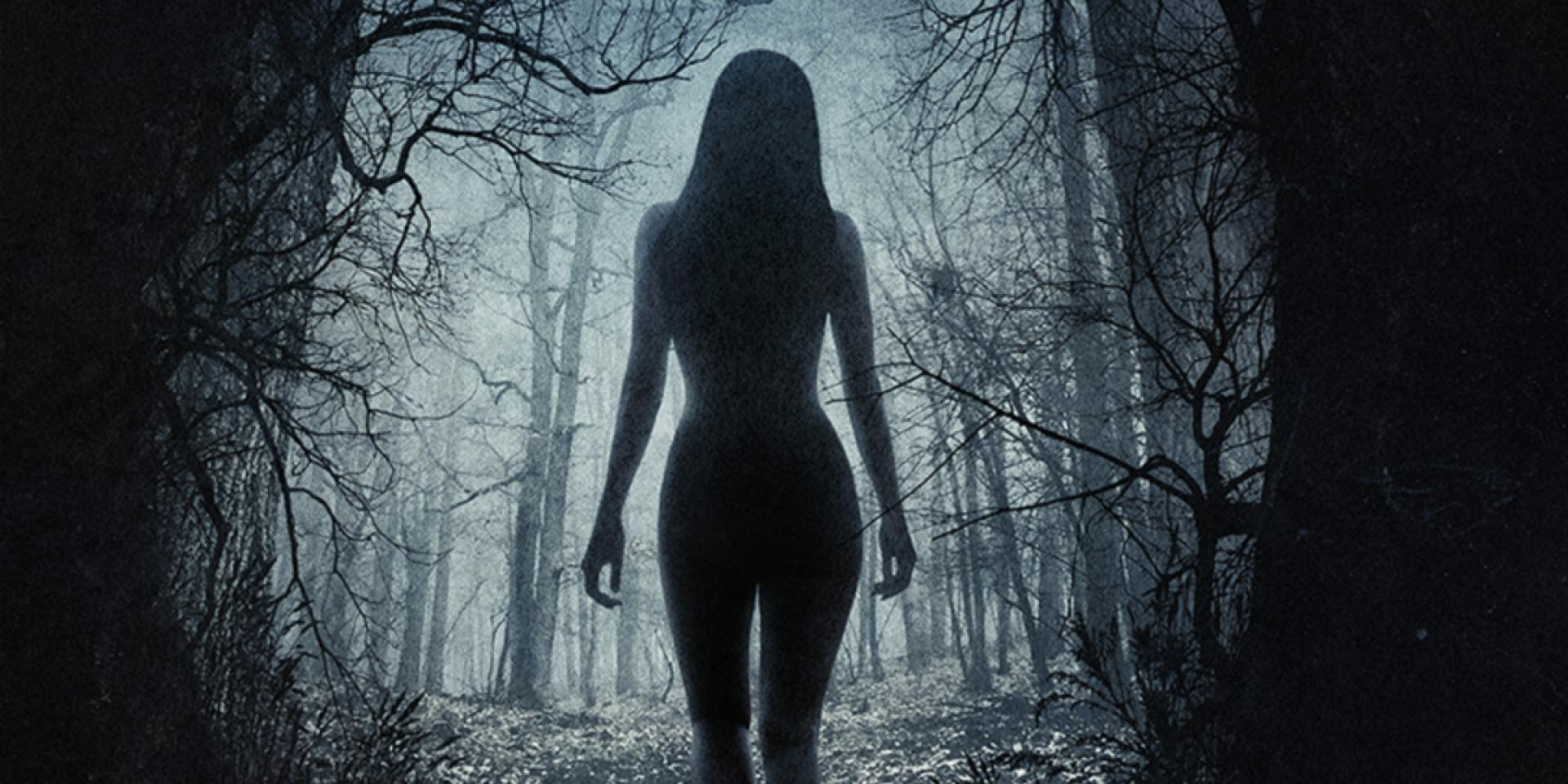 The Witch: A New England Folktale (2015)