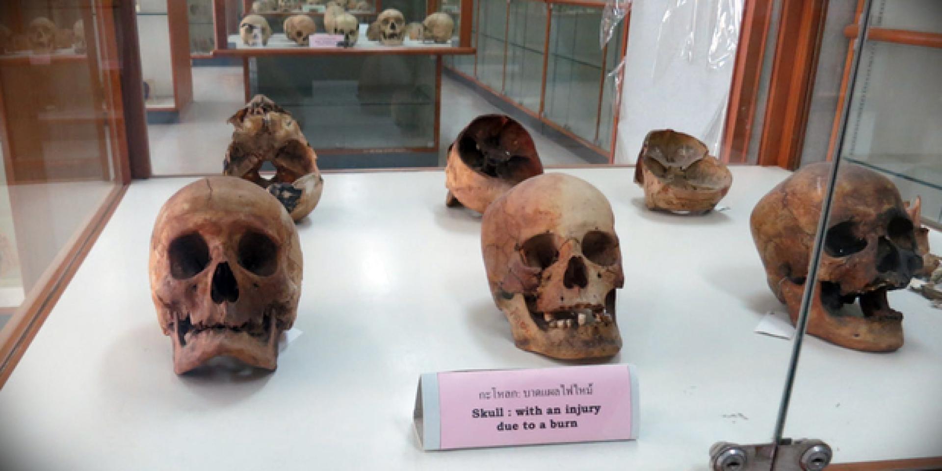 A Halál Múzeuma 9. kép