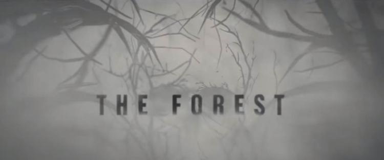 The Forest (2016) - Misztikus