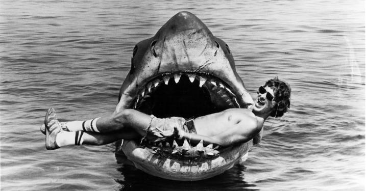 25 érdekesség A cápa című filmről - Kulisszák mögött