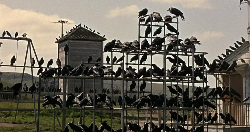 creepyclassics_the_birds_2_kep
