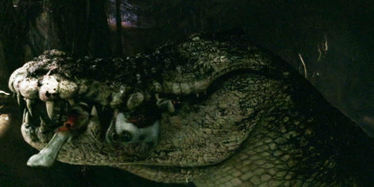 Ausztrál extrém IX. - A fenevad (2007) 1. kép